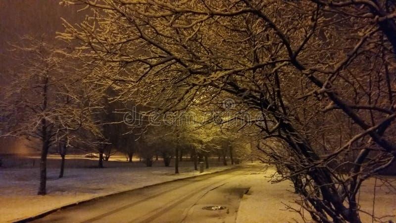 Улица в зиме стоковая фотография rf