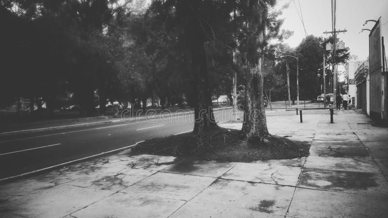 Улица Гватемала стоковое фото