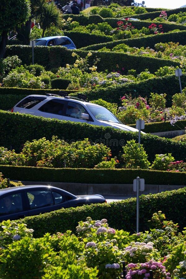 Улица ломбарда, crookedest улица в мире, Сан-Франциско, Калифорния стоковые изображения rf