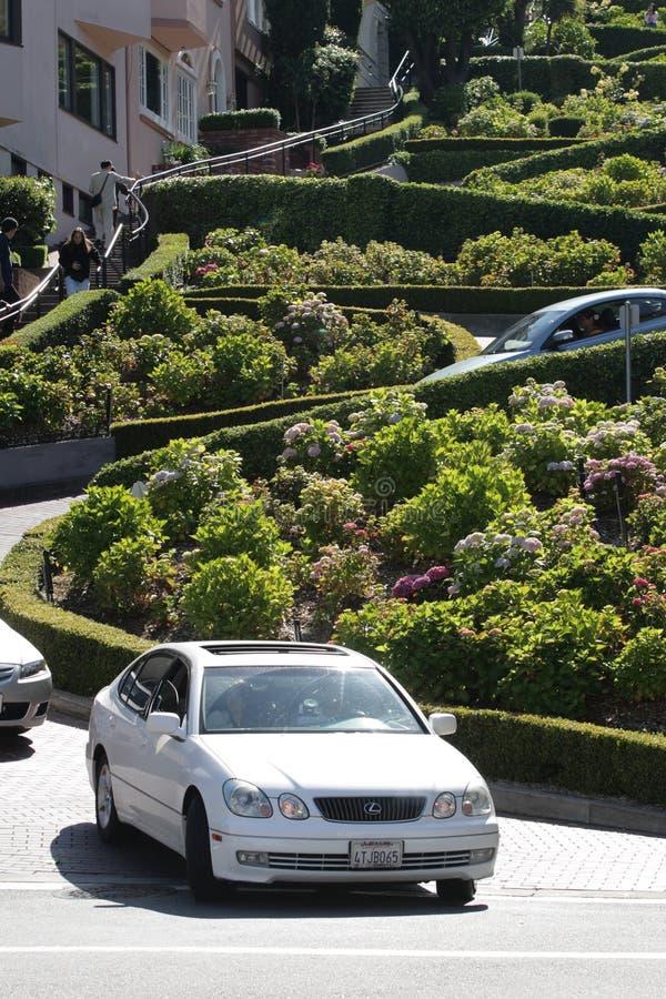 Улица ломбарда, crookedest улица в мире, Сан-Франциско, Калифорния стоковое изображение rf