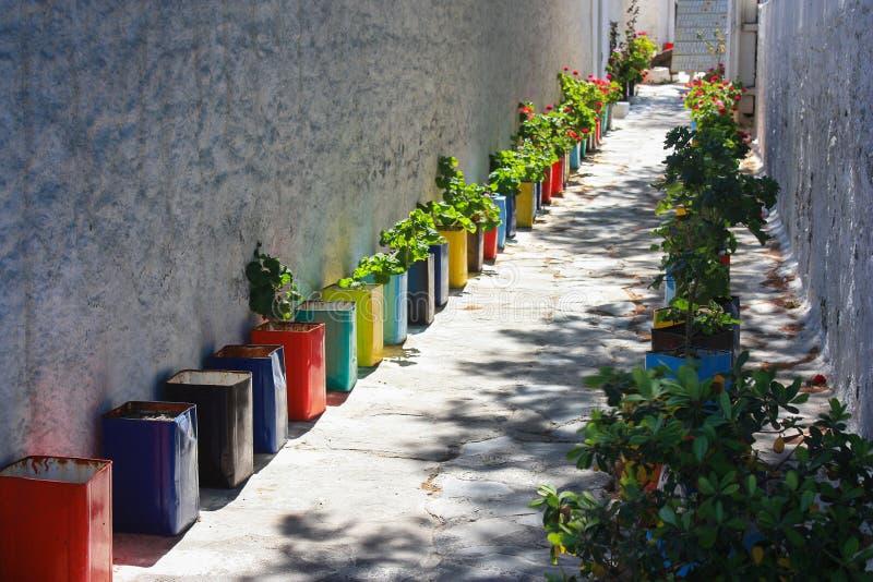 Улица украшенная с заводами в красочных баках в Mykonos, Gree стоковые изображения rf