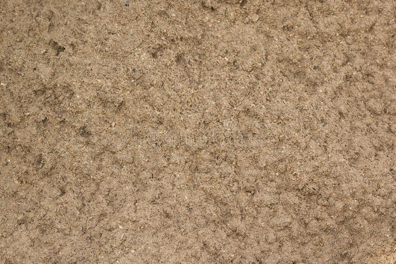 Удобрите текстуру грязи с некоторым точным зерном в ем стоковая фотография rf