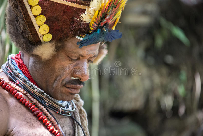 Улыбки Папуаой-Нов Гвинеи стоковые фотографии rf