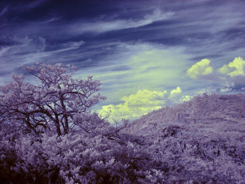 Ультракрасная фотография южной горы Ural стоковая фотография