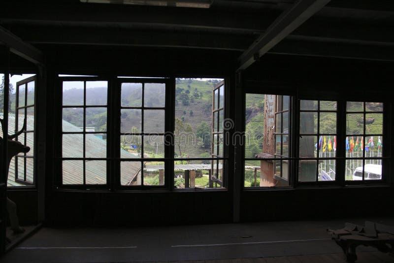 Фабрика чая в Nuwara Eliya Шри-Ланке стоковые фото