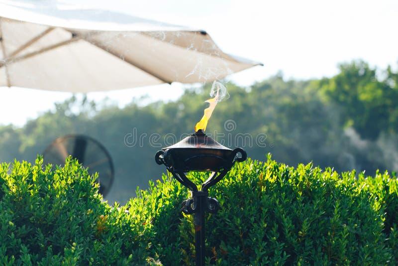 Факел Lit с оранжевым пламенем в саде используемом как репеллент москита стоковые изображения rf