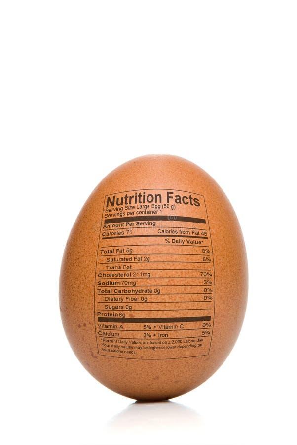 Факты питания яичка стоковое изображение rf