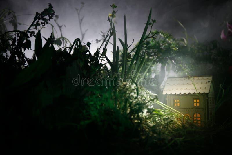 Фантазия украсила фото Малый красивый дом в траве с светом Старый дом в лесе на ноче с луной Селективный фокус стоковое фото