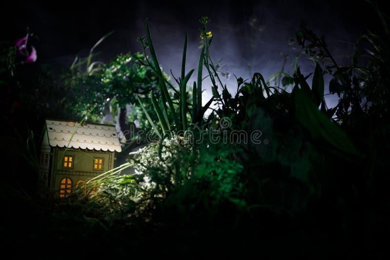 Фантазия украсила фото Малый красивый дом в траве с светом Старый дом в лесе на ноче с луной Селективный фокус стоковая фотография rf