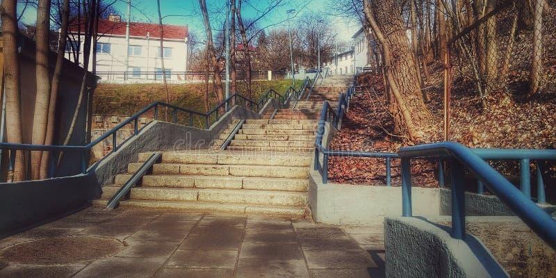 Фантастическая лестница 1 стоковая фотография rf