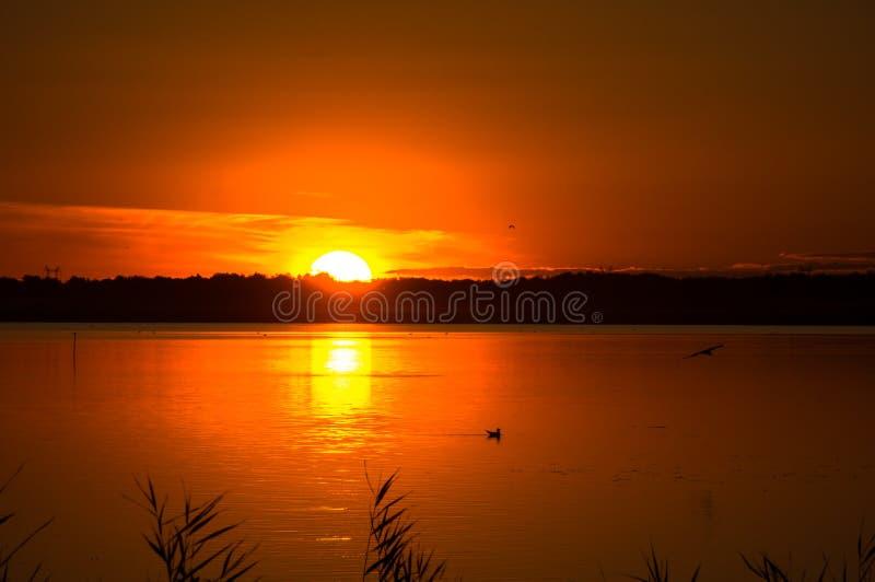 Фантастический ландшафт, multicolor небо над озером величественный восход солнца Польза как предпосылка стоковые фотографии rf