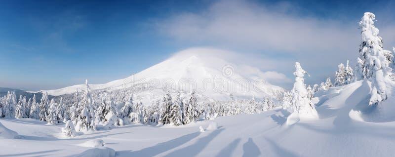 Фантастический зимний пейзаж стоковые фото