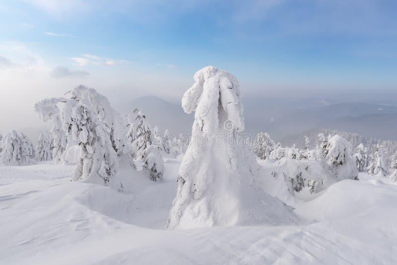 Фантастический зимний пейзаж стоковое изображение