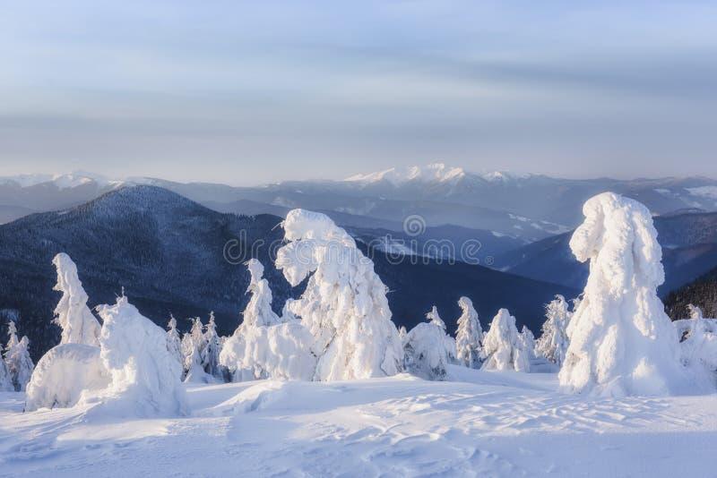 Фантастический зимний пейзаж стоковые изображения
