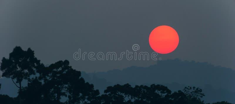 Фантастический красная установка солнца над глубокими джунглями и горной цепью Khao Yai, Таиланд стоковое изображение rf