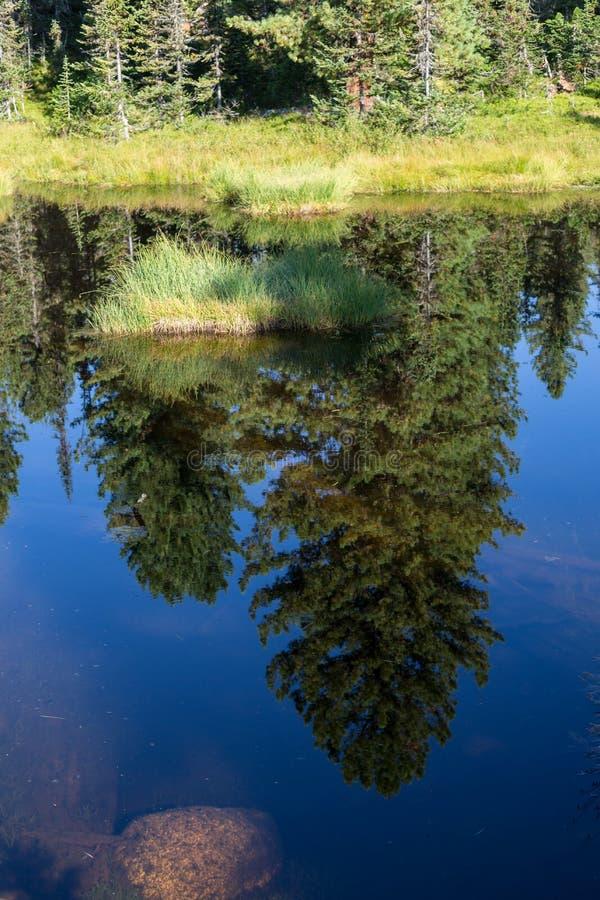 Фантастический солнечный день в озере горы Творческий коллаж Мир в национальном парке Ergaki, Россия красоты стоковое изображение rf