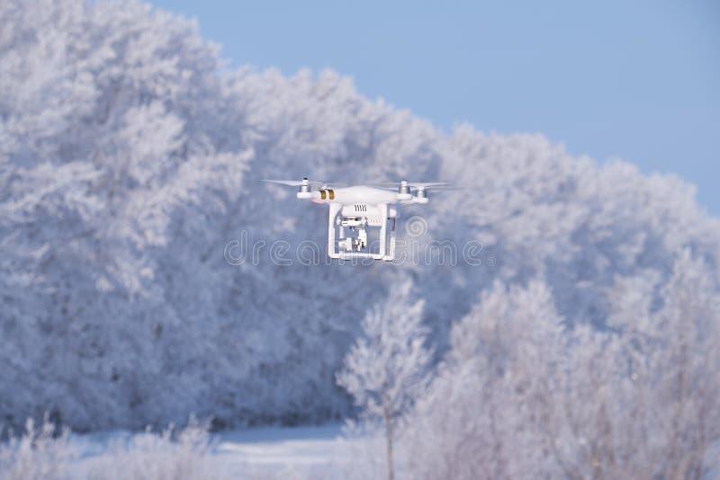 Фантом вертолета на лесе под предпосылкой снега в сезоне зимы стоковое изображение rf
