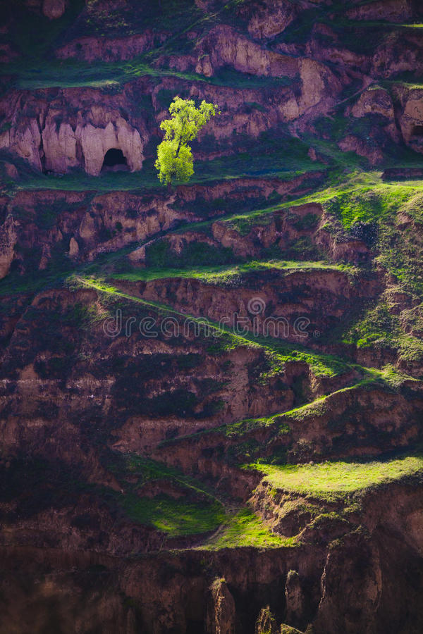 Фарфор Ганьсу майны весны стоковая фотография