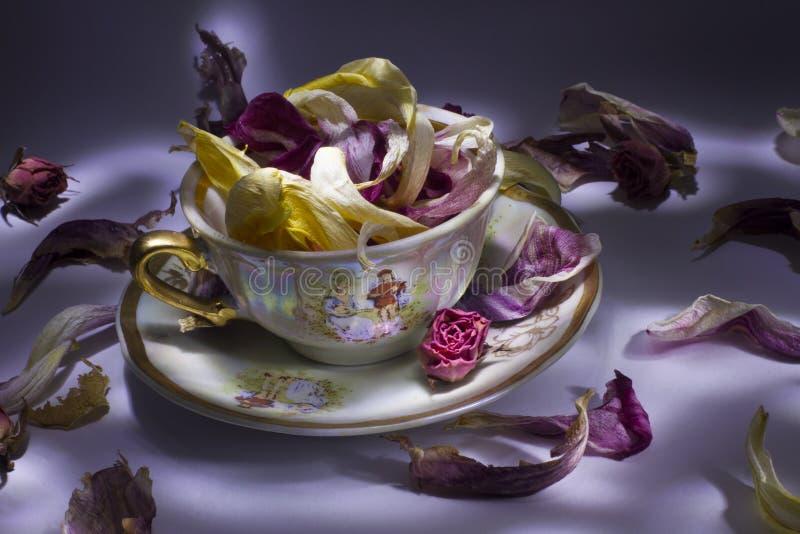 Фарфор установленный с цветками стоковое фото rf