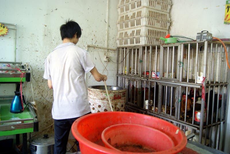 Фарфор Шэньчжэня: стойлы цыпленка супермаркета стоковые изображения rf