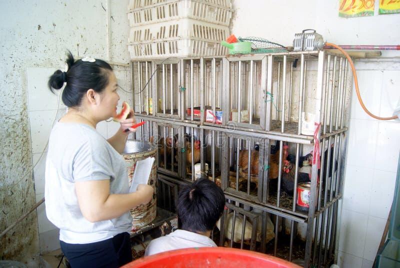 Фарфор Шэньчжэня: стойлы цыпленка супермаркета стоковые фото
