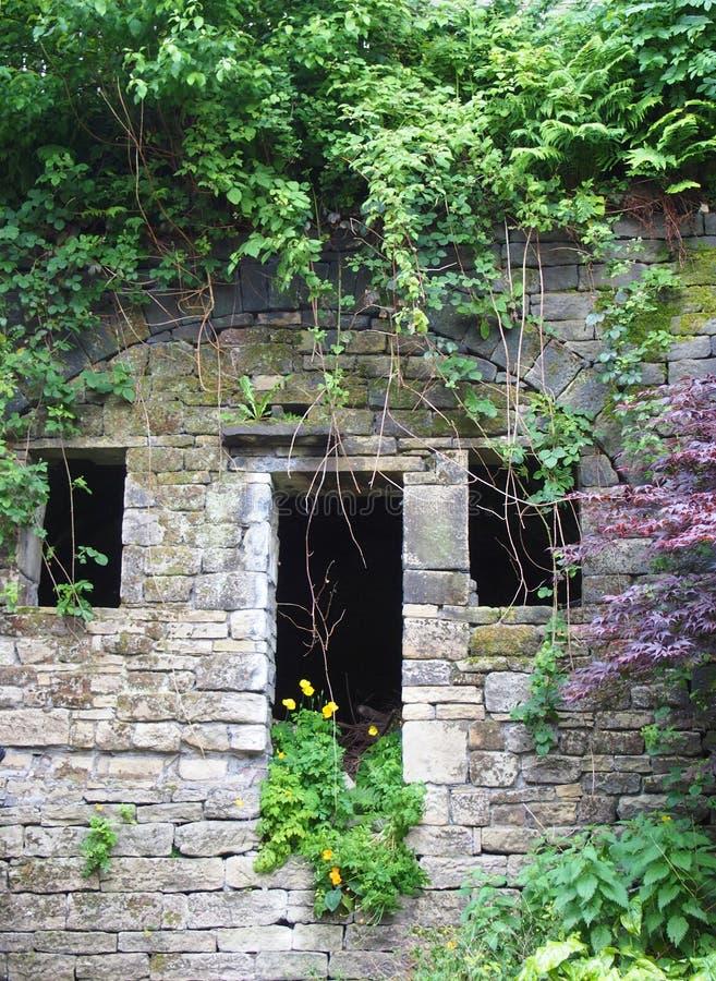Фасад получившегося отказ каменного сельского дома с пустыми окнами и входом перерастанными с красочными засорителями плющом и wi стоковые изображения rf