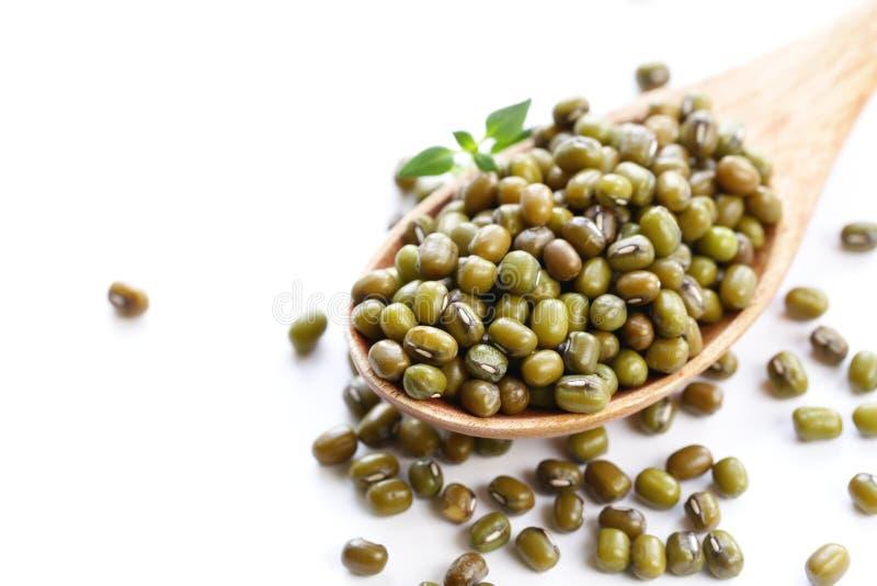 фасоли зеленый mung стоковые фото