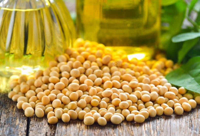 Фасоли и масло сои на деревянной предпосылке стоковое изображение
