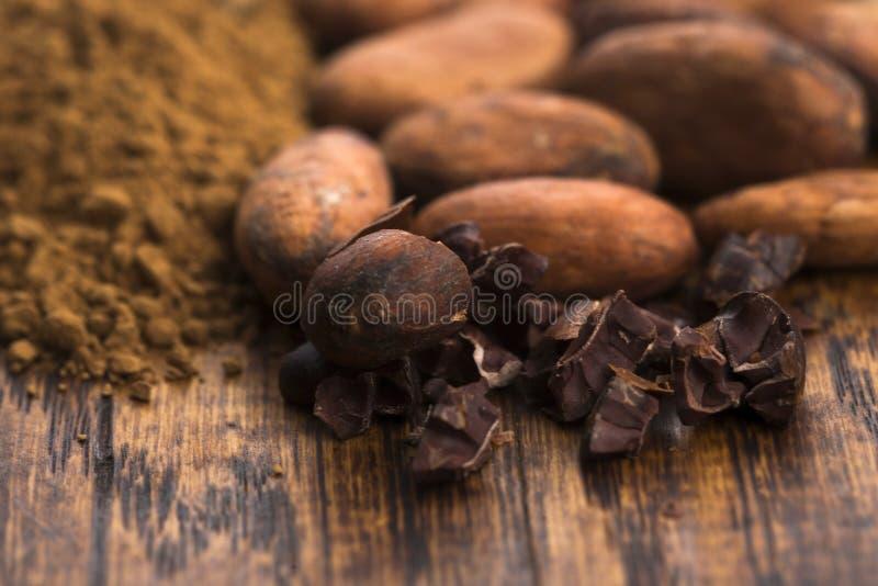 Фасоли какао и порошок какао в ложке стоковые фотографии rf