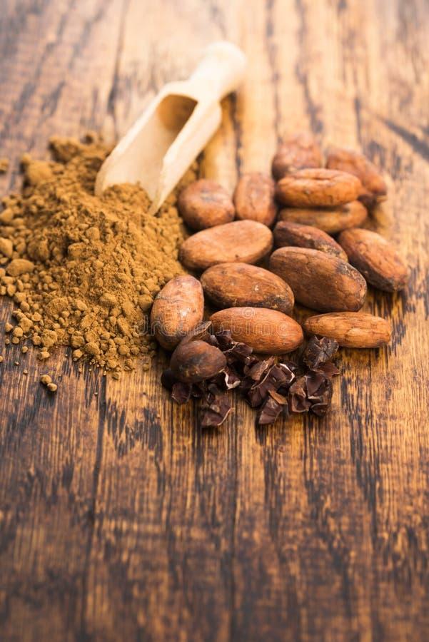 Фасоли какао и порошок какао в ложке стоковое фото