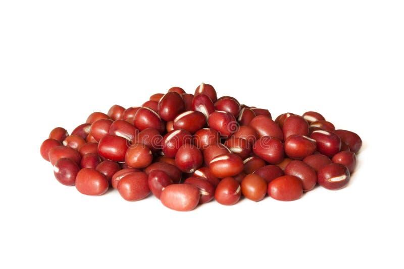 фасоли красные стоковое фото rf
