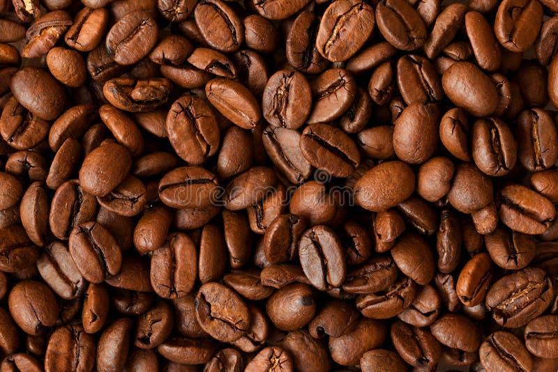 фасоли предпосылки закрывают текстуру кофе вверх стоковые фото