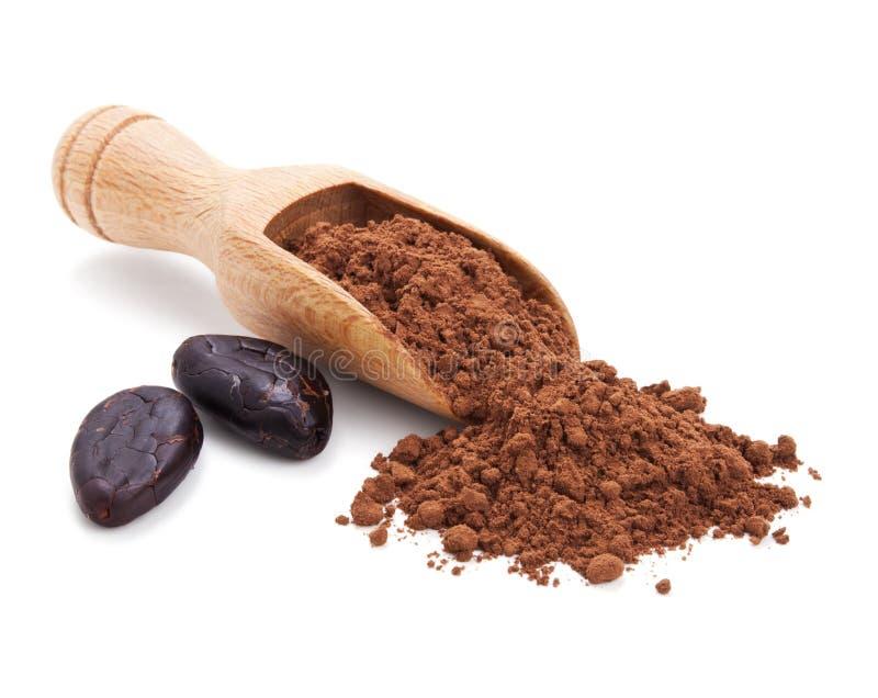 Фасоли Cacao и порошок cacao на белизне стоковая фотография rf
