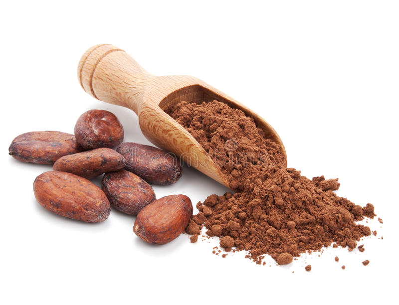 Фасоли Cacao и порошок cacao на белизне стоковые фотографии rf