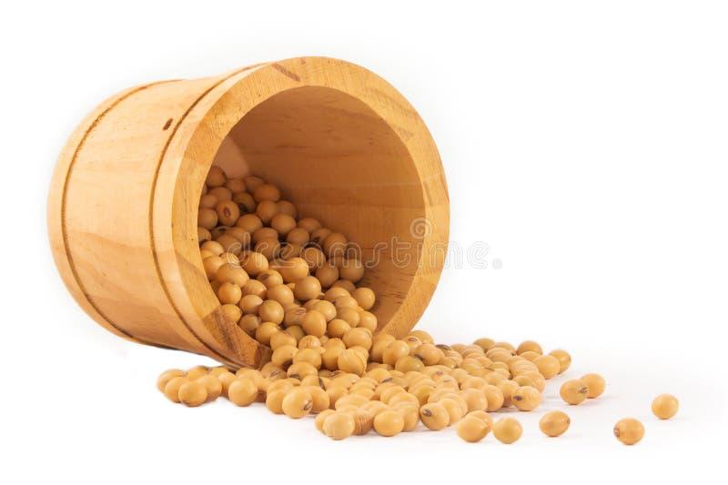 Фасоль сои в корзине изолированной на белой предпосылке стоковое фото rf