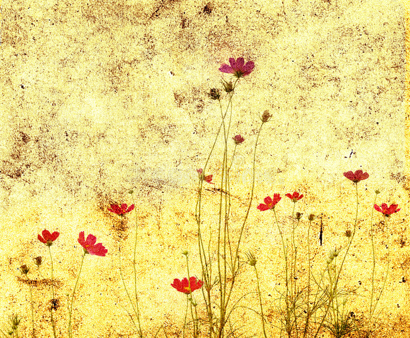 фасонируемый цветок старый иллюстрация вектора
