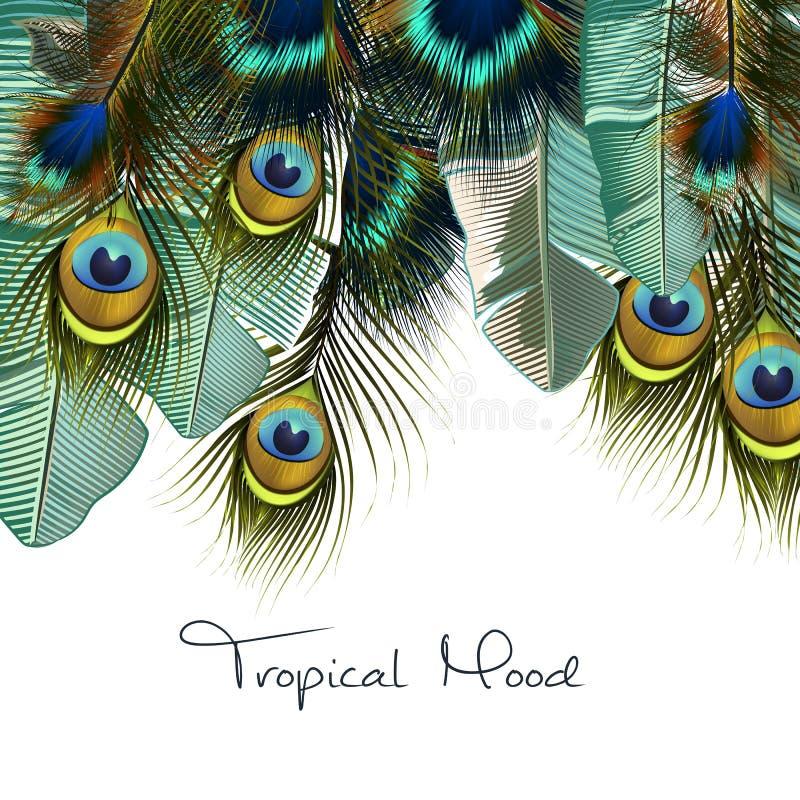 Фасонируйте тропическую иллюстрацию с реалистическими пер павлина бесплатная иллюстрация