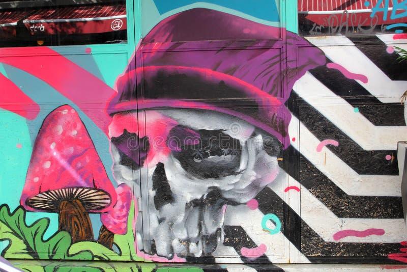 Февраль 2019, каркасные стены искусства улицы стороны, квартал Florentin, Тель-Авив стоковые фотографии rf