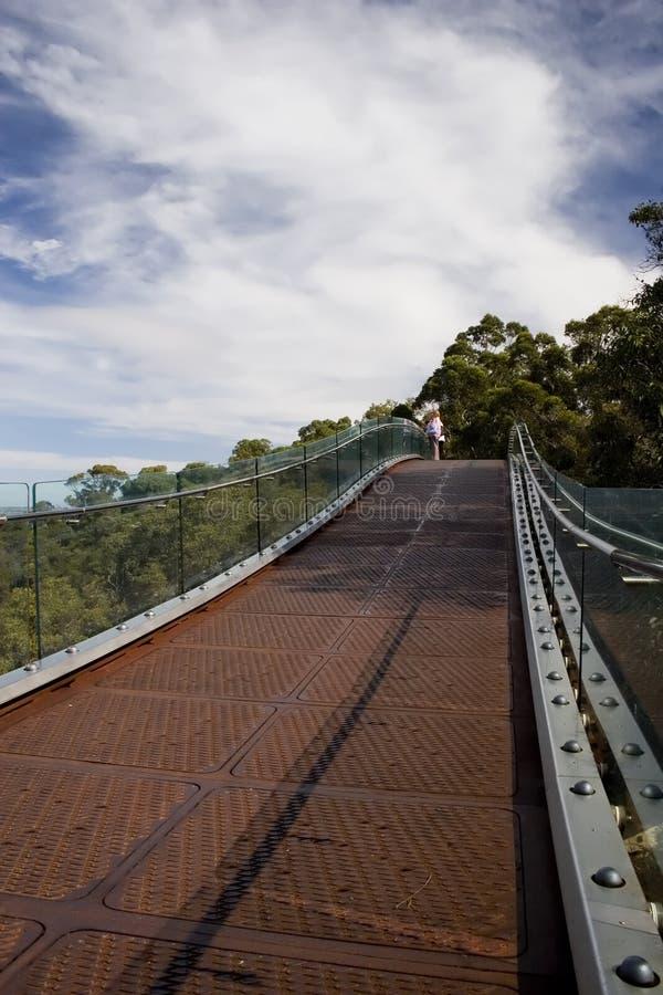 федерирование моста стоковые фото