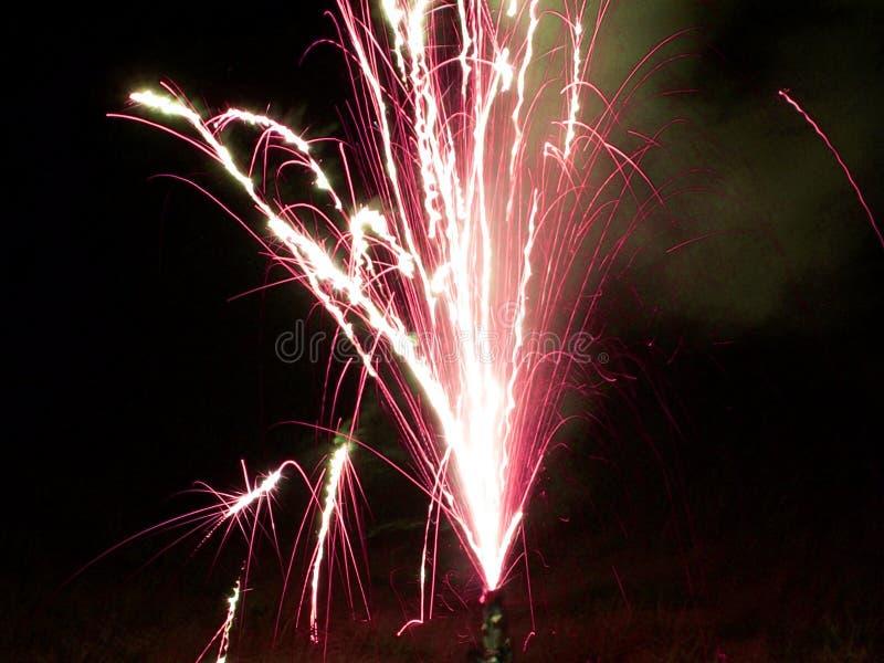 феиэрверки пурпуровые стоковое фото rf