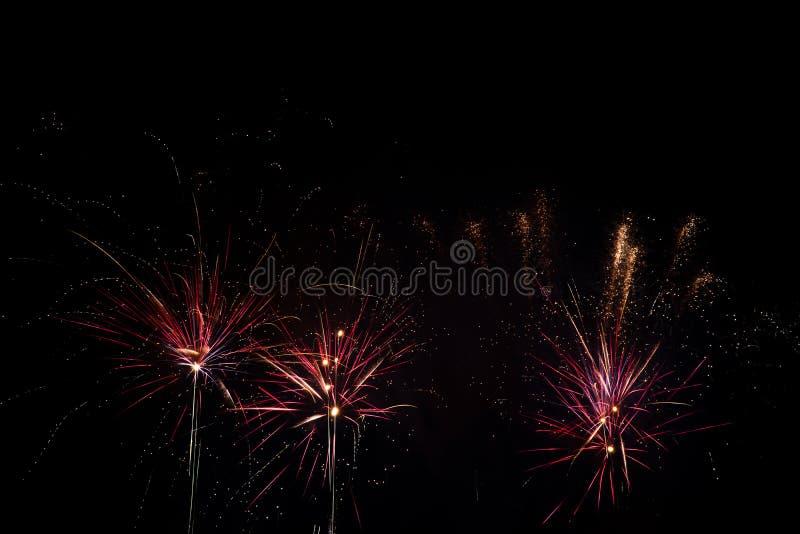 Фейерверки над черным небом стоковое фото rf