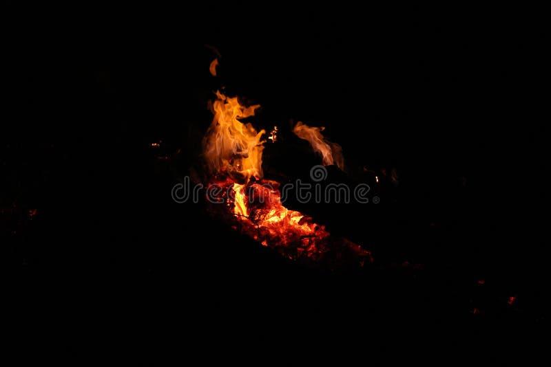 Фейерверки ночи в костре стоковые фотографии rf