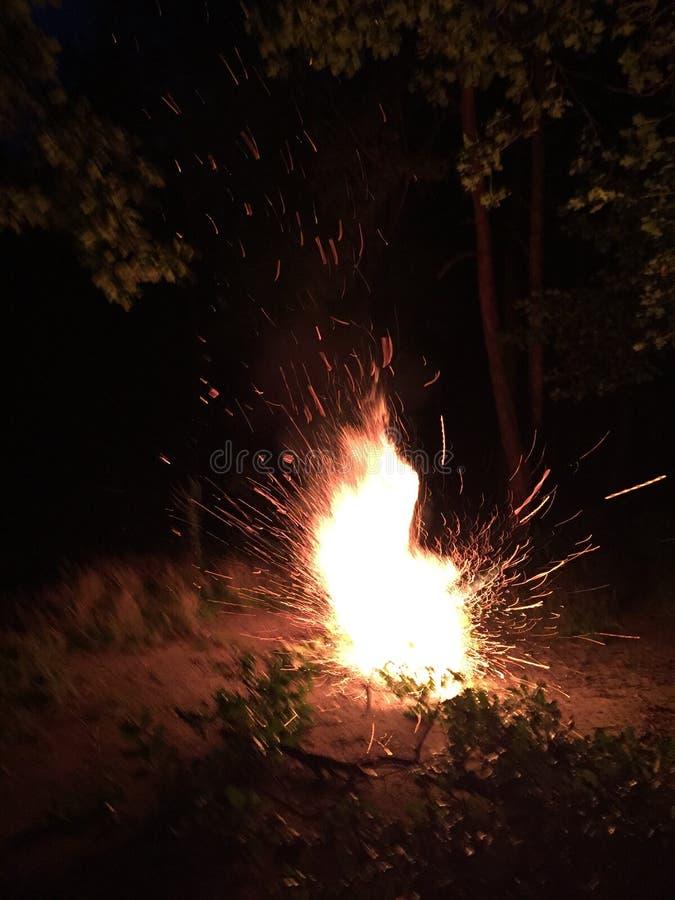 Фейерверк взрывает в огне в лесе стоковая фотография rf