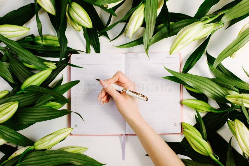 Фемининовая рука, пишущая в тетради, окруженная зелеными свежими цветами на белом фоне Красивая рабочая область стоковое фото rf