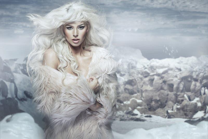 Ферзь снега на ледяном острове стоковые изображения