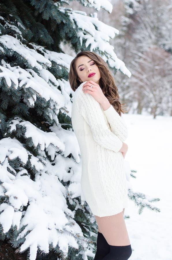 Ферзь снега Портрет женщины зимы стоковое фото rf