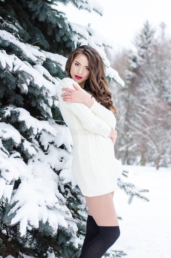 Ферзь снега Портрет женщины зимы стоковая фотография rf