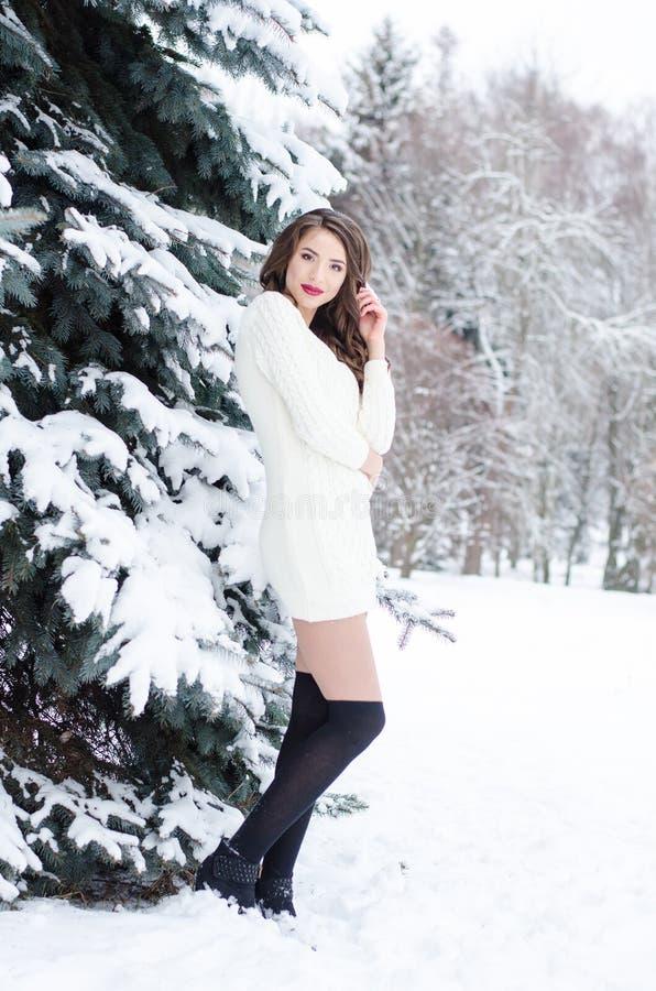 Ферзь снега Портрет женщины зимы стоковая фотография