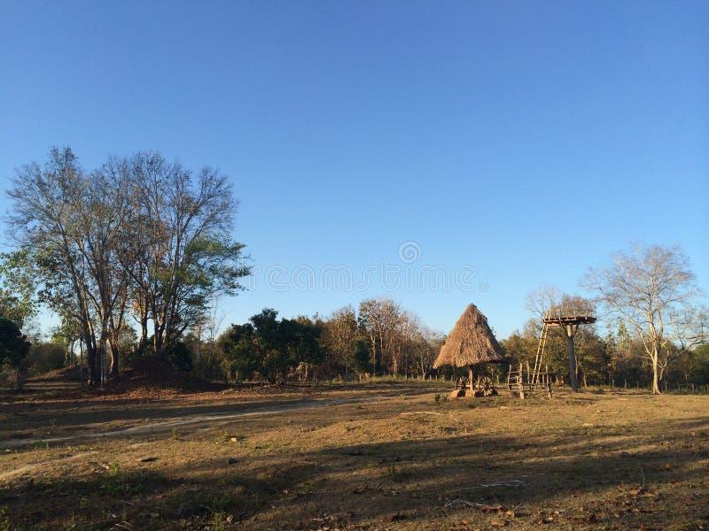 Ферма в Omkoi стоковые фото