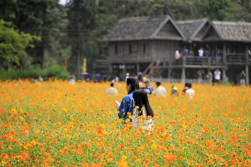 Ферма Джима Томпсона, Таиланд стоковые фото